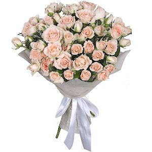 Цветы в хабаровске купить дешево