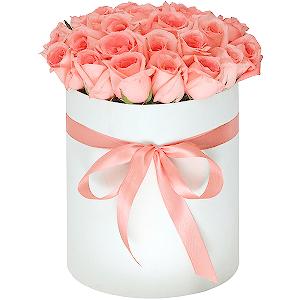 Доставка цветов в хабаровске недорого купить многолетние цветы в интернет-магазине агротех