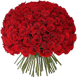 Где купить черные розы по хабаровскому краю провод тюльпаны купить